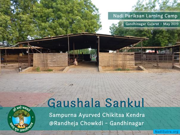 ayurved-chikitsa-kendra-randheja-gandhinagar-gujarat-6